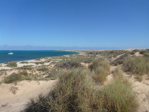 Ningaloo Coast Coral Bay