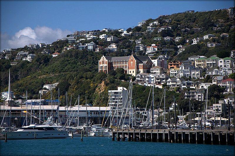 Wellington, photo by Angela