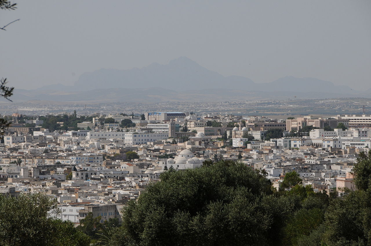 Tunis & Carthage, photo by T A