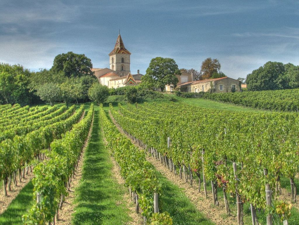 Bordeaux, photo by Michael Clarke