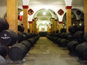 Sherry Region & Cadiz